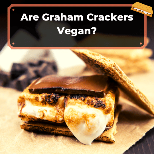 Are Graham Crackers Vegan