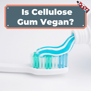 Is cellulose gum Vegan?