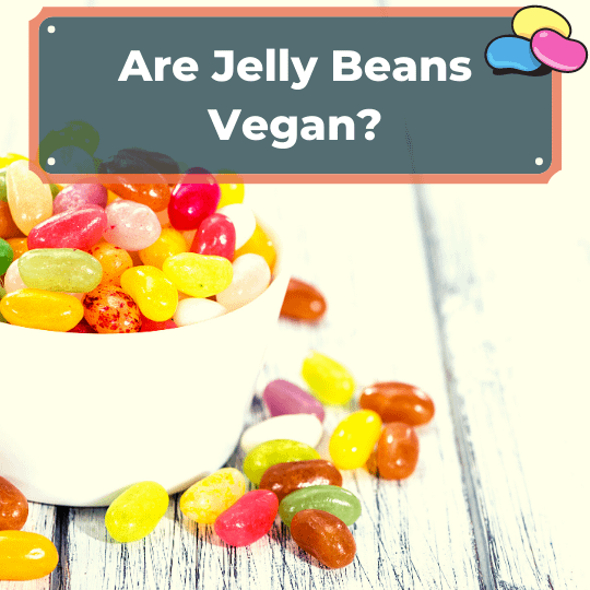 Are Jelly Beans Vegan